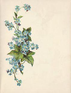 Little Birdie Blessings : Forget Me Nots ~ Steppingstone Poem