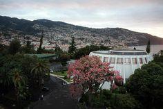 #Funchal, na ilha da #Madeira, lugar com belas plantas e flores e com o Hotel Pestana Casino Park, com arquitectura de Oscar Niemeyer. Ainda, Câmara de Lobos, cidade na costa sul  http://lgb-foto.blogspot.pt/2015/01/madeira-ilha-jardim.html