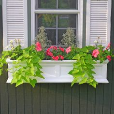 42 Best Flowers for Window Boxes 29 Self Watering Window Boxes Flower Boxes & Deck Rail Planters 5 Window Box Plants, Window Box Flowers, Window Planter Boxes, Flower Boxes, Planter Ideas, Window Sill, Plastic Planters, Hanging Planters, Outdoor Planters