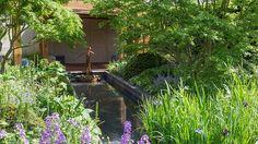 RHS Chelsea Flower Show 2016  - gold medal winning Morgan Stanley garden by Chris Beardshaw