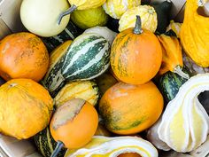 Assorted Mini Gourds In A Basket