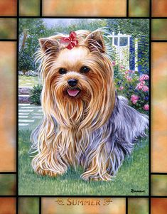 Yorkshire Terrier – Energetic and Affectionate Terrier Breeds, Terrier Dogs, I Love Dogs, Cute Dogs, Yorkie Dogs, Yorkshire Terrier Puppies, Dog Paintings, Dog Art, Cute Animals