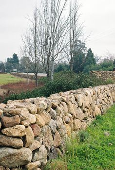Stone wall fences New England style - If IU could only get this in the south. Do you know how many rocks I would need to steal from my grandmothers?!?!?!