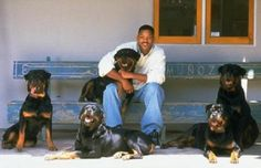 Will smith with his Rottweilers. I already loved Will Smith, but now I love him even more.