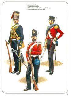 Print. Military Uniforms. Crimea Campaign - Pierre Turner
