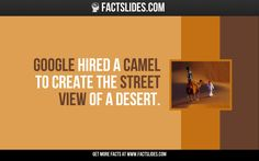 Google hired a camel to create the Street View of a desert.
