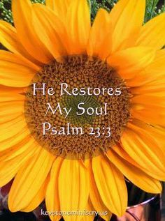 He maketh me to lie down in green pastures; He leadeth me beside the still waters, He restoreth my soul: He leadeth me in the paths of righteousness for His name's sake. ~ Psalm 23 2-3.