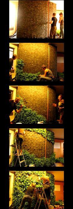 Green wall by Briellewest
