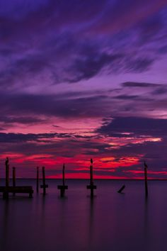 Purple Haze by Chris Ferrell