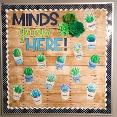 Totally in ❤️ with my welcome back bulletin board set! My 3D succulents look amazing with it! Can I leave it up all year please?