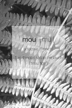 Unique, sensually soft shoes and accessories, handcrafted from premium natural fires. #lovemou