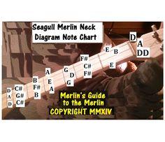 seagull merlin diagram note chart.jpg