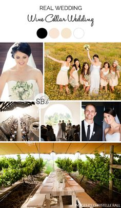 I just love a vineyard wedding, don't you? Maybe it's my years at Stellenbosch that gave me such a love for wine farms (and, er, wine), but I do think there's nothing quite like t… Vineyard Wedding, Wine Cellar, Farms, Real Weddings, Wedding Ideas, Bride, Future, Stone, Batu