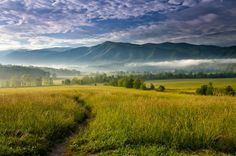 ***Cades Cove Meadow by Andrew Soundarajan / 500px E