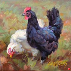 Social Graces von Linda Volrath Oil ~ 6 x 6 - Vogel Rooster Painting, Rooster Art, Chicken Painting, Chicken Art, Farm Paintings, Animal Paintings, Watercolor Bird, Watercolor Paintings, Farm Art