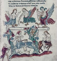 13th century manuscript, Bodleian. Battle between humans and centaurs, while Sirens play their deadly music above. petrus.agricola, via Flickr