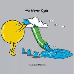 The water cycle - by awkward yeti