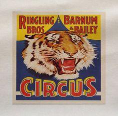 Cirque-tigre-imprime-sur-tissu-panneau-faire-un-coussin-dameublement-artisanat