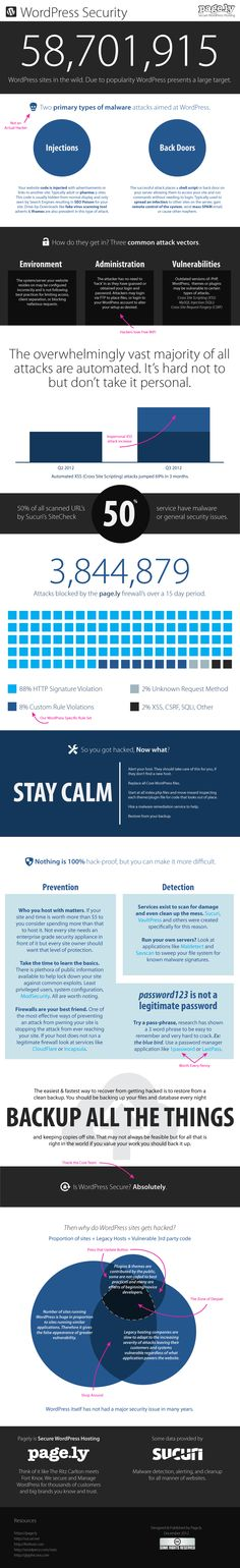 WordPress Security: Common Malware and Attacks infographic created by Pagely. See what the common attacks are and see what you can do to prevent these attacks. Lombok, Wordpress Plugins, Wordpress Theme, Learn Wordpress, Ignorance, Software Libre, Website Security, Security Tips, Security Guard