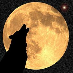 """""""Did you ever hear the wolf cry to the blue corn moon......"""" Paint With All the Colors of the Wind""""  Disney's  Pocahontas"""