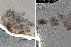 The satellite image at left shows a close-up of the Helley penguin colony in Antarctica. At right is a close-up of the colony at Cape Roget.