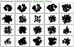 trees in plan