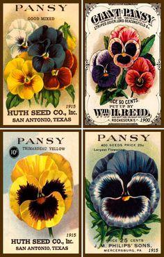 Olde America Antiques | Quilt Blocks | National Parks | Bozeman Montana : Flowers - Flowers Set 1 Pansies