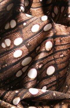 Textile design inspired by biomimicry