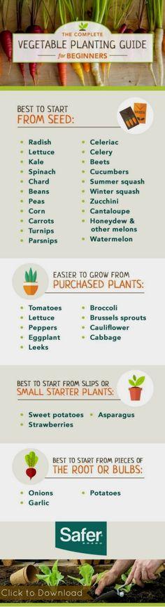 The Complete Vegetable Gardening Guide for Beginners [FREE] #flowergardenforbeginners #OrganicGarden  #vegetablegardeningideas