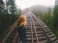 Vance Creek Bridge - WA