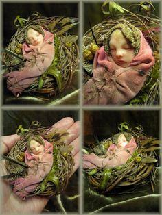 Fairy nursery....Rose....Rosa Grueso