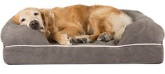 "Amazon.com : Friends Forever Ultimate Large Dog Bed / Lounge, Prestige Edition (36 x 28 x 9"") (Pewter) : Pet Supplies"