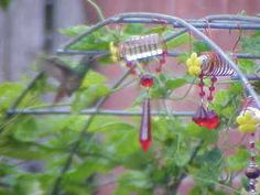 DIY hummingbird feeder from insulin bottles