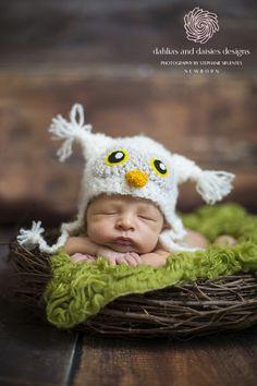 Dallas Newborn Boy Photographer - newborn boy owl