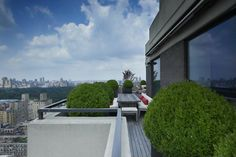 Neighbor's terrace - boxwoods used as an architectural element in a highly ordered space.