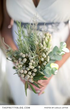 Super sweet succulents have become very popular for wedding themes. Add succulents to your bouquet, as part of the wedding decor or as succulent favors - here's why we love them! Natural Bouquet, Bouquet Photography, Succulent Bouquet, Luxury Flowers, Farm Wedding, Wedding Blog, Wedding Ideas, Bride Bouquets, Bridal Flowers