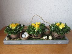 Paastaartjes Easter Flowers, Spring Flowers, Easter Projects, Easter Crafts, Easter Garden, Palm Sunday, Flower Decorations, Flower Art, Floral Arrangements