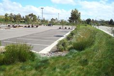 vegetated bioswale from parking lot
