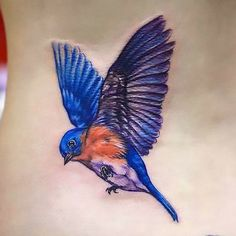 Soaring Bluebird Tattoo Idea & Stacy attach the stroke survivor ribbon in its claws and it would be beautiful