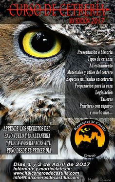 Curso cetreria en Segovia Halconeros de Castilla 2016