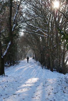 Snowy Christmas walk, Ottery St Mary