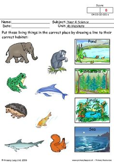 PrimaryLeap.co.uk - Where do they live? Worksheet