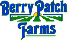 Berry Patch Farms in Woodstock.  Blueberries in the spring, pumpkins in the fall, Christmas trees in winter.
