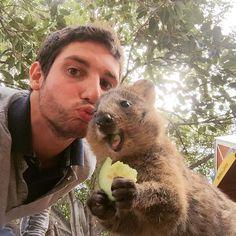 #australia #straya #OZ #westcoast #perth #rottnestisland #rottnest #quokka #quokkaselfie #quokkahappy #loveit #wanderlust #travelgram #timeofmylife #goodtime #fresssack by michitrefzer http://ift.tt/1L5GqLp