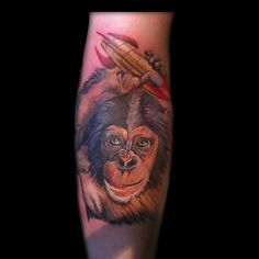 Space Monkey part of an evolution sleeve
