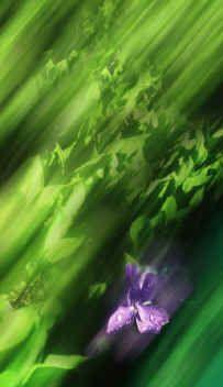 Green by Michel Roudnitska- courtesy of Michael Edwards Chanel 19, Chanel Perfume, Paris Suburbs, Green, Fragrance