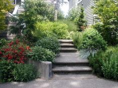 Gorgeous Walkways Front Yard Landscaping Inspirations On A Budget Landscape Curbing, Pool Landscape Design, Landscape Plans, Forest Landscape, Contemporary Landscape, Front Yard Decor, Front Yard Design, Front Porch, Front Yard Landscaping