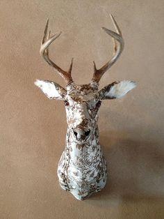 trophée de chasse par Kelly Rene Jelienek