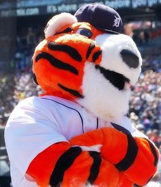 Paws! Love our Tigers mascot.