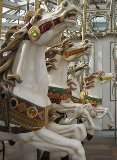 Carousel Horses ...Loved them since I was a very small child. The Atlanta Zoo had some beautiful ones......
